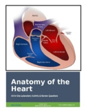 Anatomy of the Heart All-in-One Sheep Dissection Lab Activity & Review Worksheet
