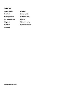 Anatomy of the Knee Quiz/Worksheet