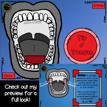 Anatomy of the Mouth for Speech and Language Articulation Therapy No Print