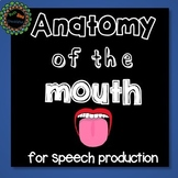 Anatomy of the Mouth for Articulation, A Speech Therapy No Print