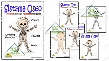 "Anchor CHart "" Sistema Oseo"" (Spanish)"