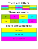 Anchor Chart - Letters - Words - Sentences