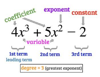 Anchor Chart - Part of an Algebraic Expression/Polynomial