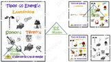 "Anchor Chart "" Forms of energy"" (Spanish)"
