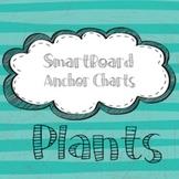 Anchor Charts -- SmartBoard -- PLANTS
