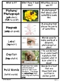 Anchor Charts for Learning Nonfiction Text Features