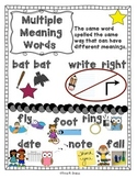 Anchor Charts for Multiple Meaning Words
