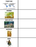 Ancient Americas Vocabulary Cards