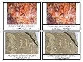 Ancient Art 3-Part Cards/Nomenclature Cards Montessori Primary/Lower Elementary