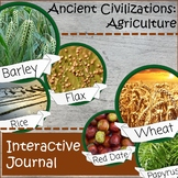 Ancient Civilizations: Distance Learning Interactive Journ