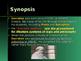 Ancient Civilizations - Key Figures - Socrates