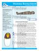 Ancient Egyptian Mummy Reenactment Activity