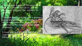 Ancient Gliding Lizards