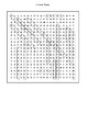 Ancient Nile River Word Search and Vocabulary Assignment