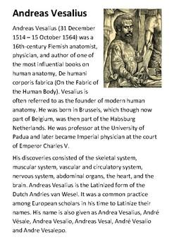 Andreas Vesalius Handout
