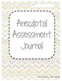 Anecdotal Assessment Journal