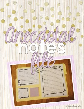 Anecdotal Notes File