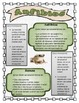 Anfibios/Ciclo de Vida de la Rana Paquete de Actividades