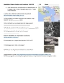 Angel Island and San Francisco History of Immigration Webquest