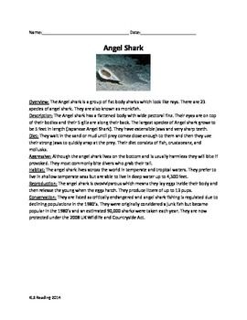 Angel Shark - Review Article questions vocabulary word sea