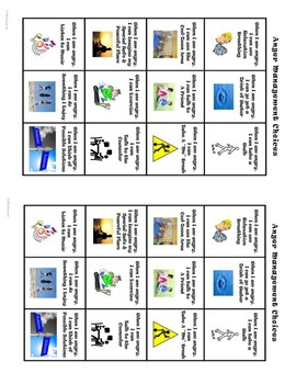 Anger Management Emotional Regulation Choices Poster- 1/4 pg, 1/2 pg, full page