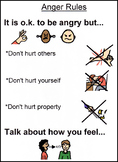 Anger Rules Visual Autism