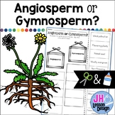 Angiosperms and Gymnosperms: Cut and Paste Sorting Activity