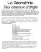 Angle Birds Geometry en français