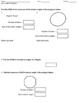 Angle Measures of Polygons Quiz