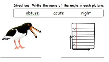Angles, Sides, & Vertices Common Core Math Worksheets