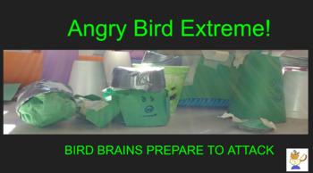 Angry Bird Extreme
