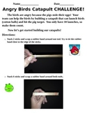Angry Birds Catapult Activity Lab- STEM