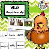 Anifeiliaid Y Fferm Matching Words to Pictures Welsh