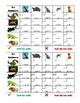 Animais (Animals in Portuguese) Grid Vocabulary activity