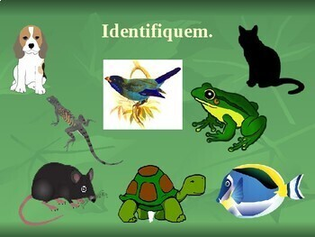 Animais (Animals in Portuguese) PowerPoint