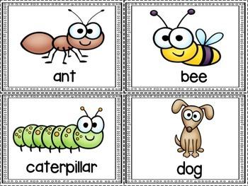 Animal ABCs: An ABC Order Activity