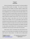 Animal Abuse - Argumentative essay