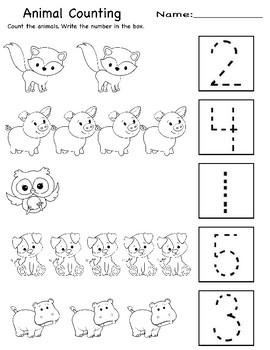 Animal Activity Sheets