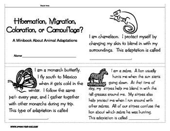 Animal Adaptation Activities - Mini Unit