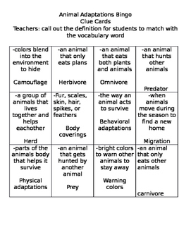 Animal Adaptation Bingo