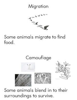 Animal Adaptation Emergent Reader