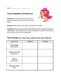 Animal Adaptation Lab: Bird Beaks