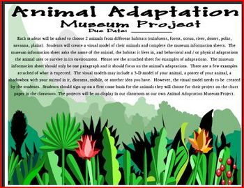 Animal Adaptation Museum Project