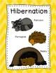 Animal Adaptation Posters