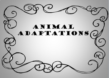 Animal Adaptation Powerpoint with video clips (Power Point)