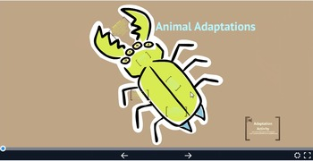 Animal Adaptation Prezi