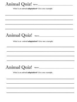 Animal Adaptation Quiz