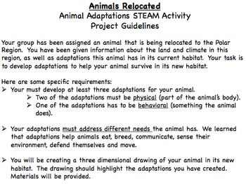 Animal Adaptation STEAM Activity: Animals Relocated