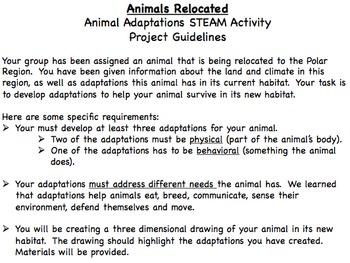 Animal Adaptation STEAM Activity: Animals Relocated