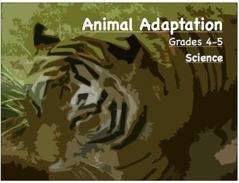 Animal Adaptation - Science Lesson - Grade 4 -5